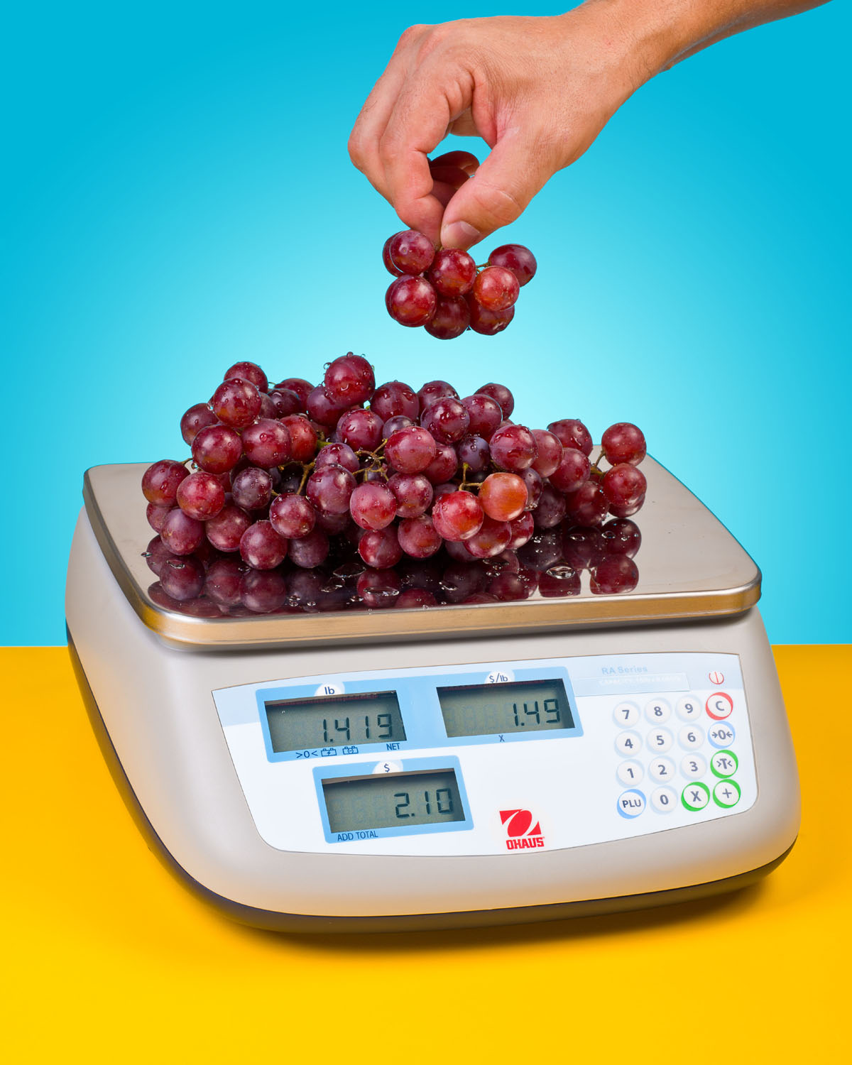 PORTABLE RETAIL SCALE LEGAL FOR TRADE, EASY TO USE & CLEAN