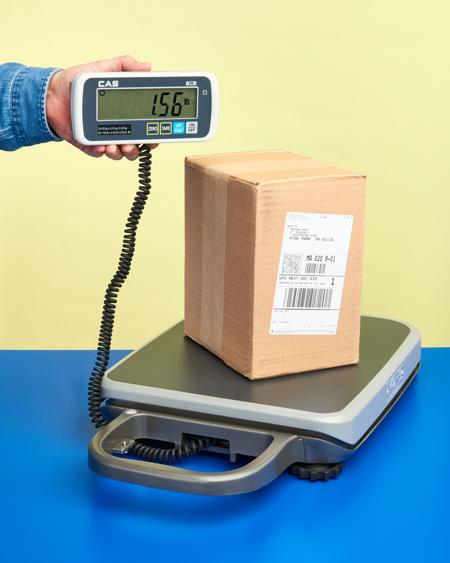 PORTABLE BENCH SCALE DISPLAY DETACHES FOR EASY VIEWING
